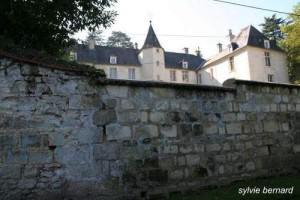 Le château - Vivières