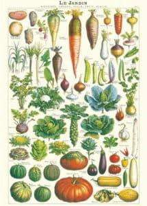 Poster les légumes du jardin